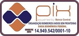 CHAVE PIX-BUSF.jpg