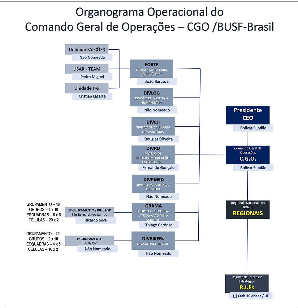 Organo-2.jpg