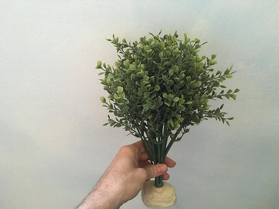 Rainforest plant  Exo Terra