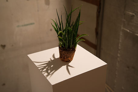 ART|art|アート|shintakukanako|新宅加奈子|