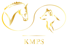 Logo-KMPS-OR.png