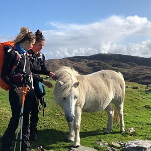 Coaching Trek Beara Bere