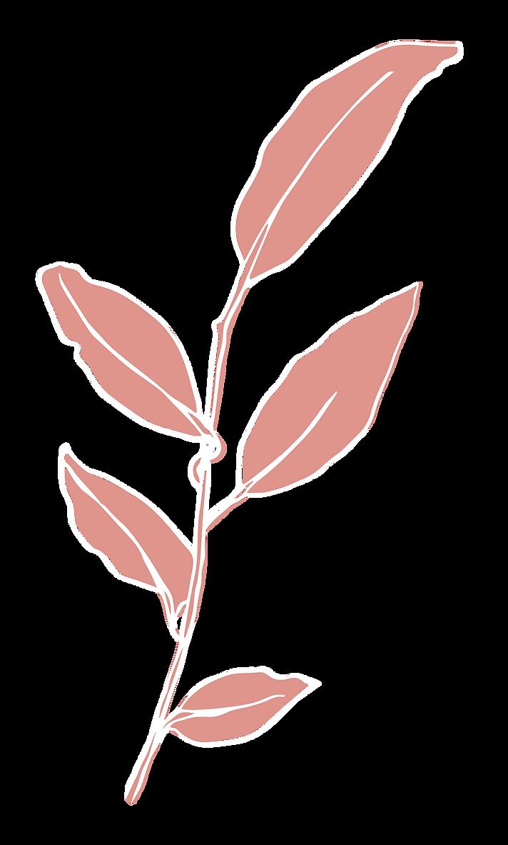 Eucalyptus_rgb-01.png
