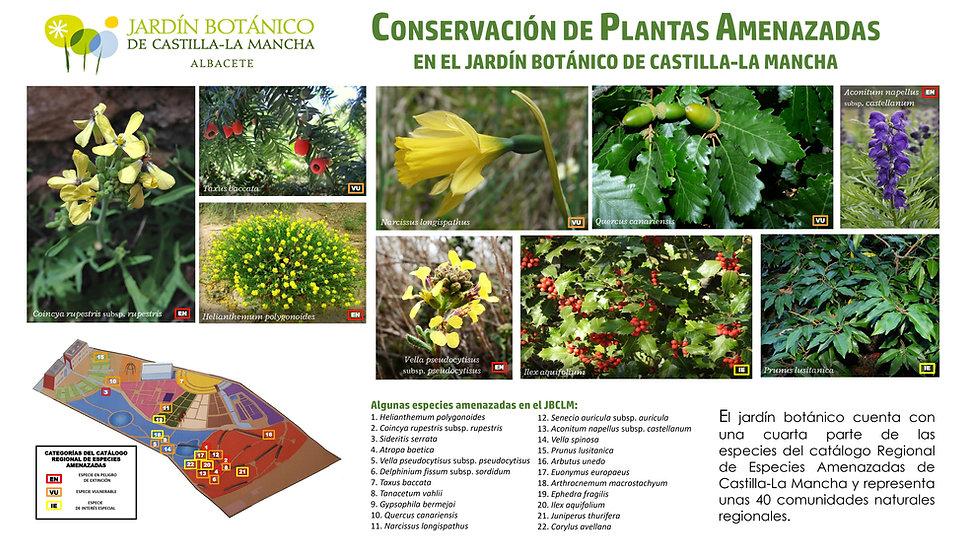 PLANTAS AMENAZADAS_page-0001.jpg