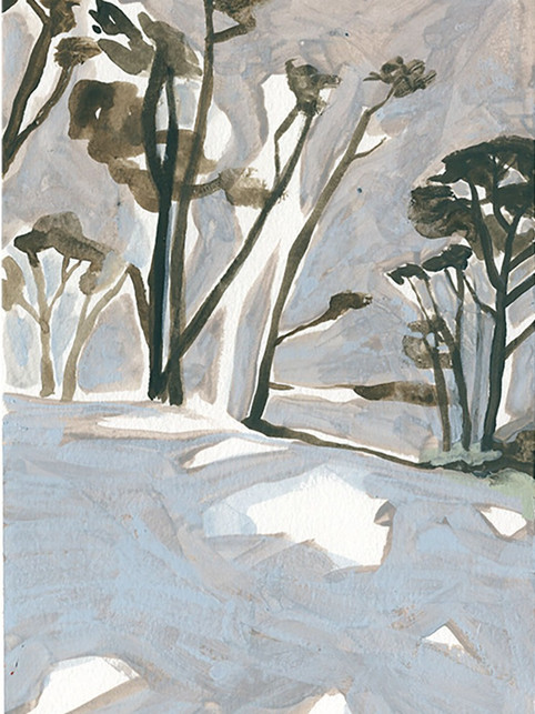Snow in the Pines II