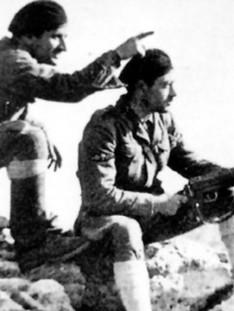 AR-63.JPG