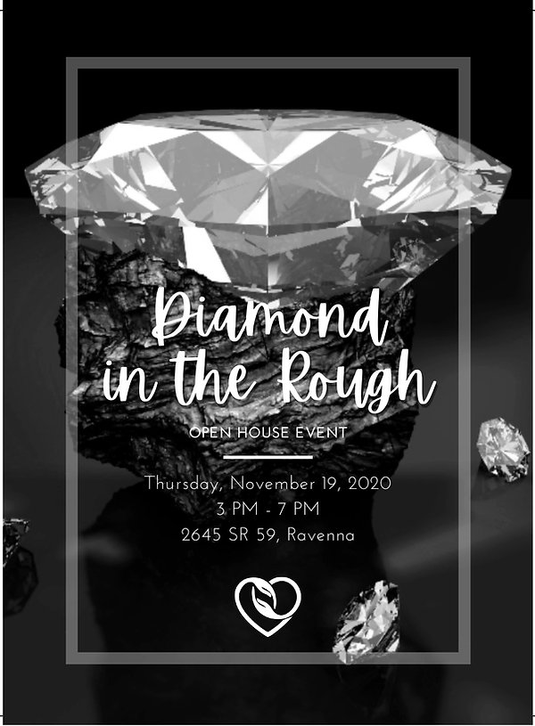 diamond in the rough_5x7-1.jpg