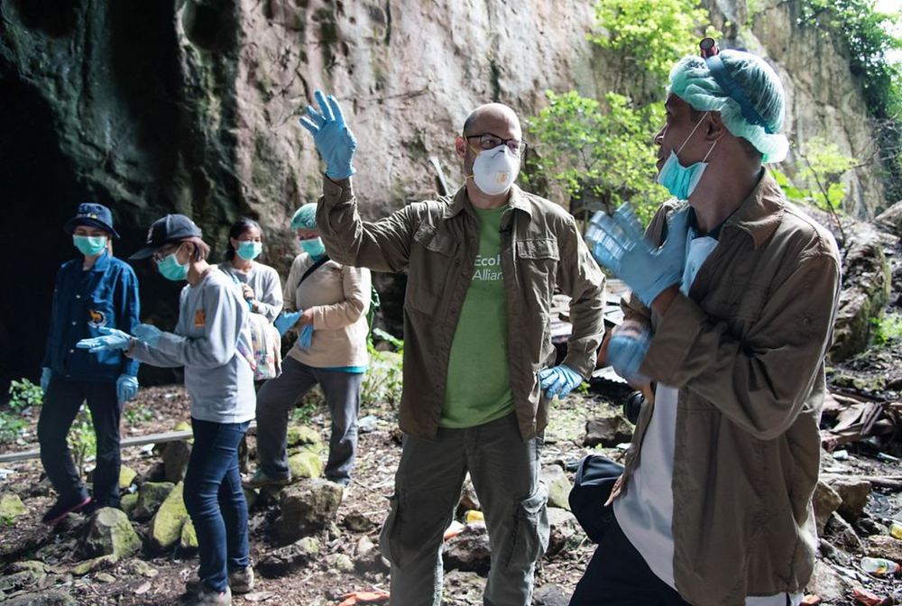 Ecohealth Alliance Covid-19 Diseases Pandemics bats