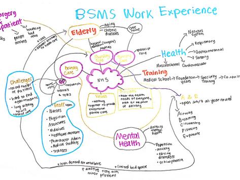 BSMS Virtual Work Experience