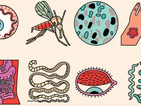 What are neglected tropical diseases (NTDs)? Why should we care?