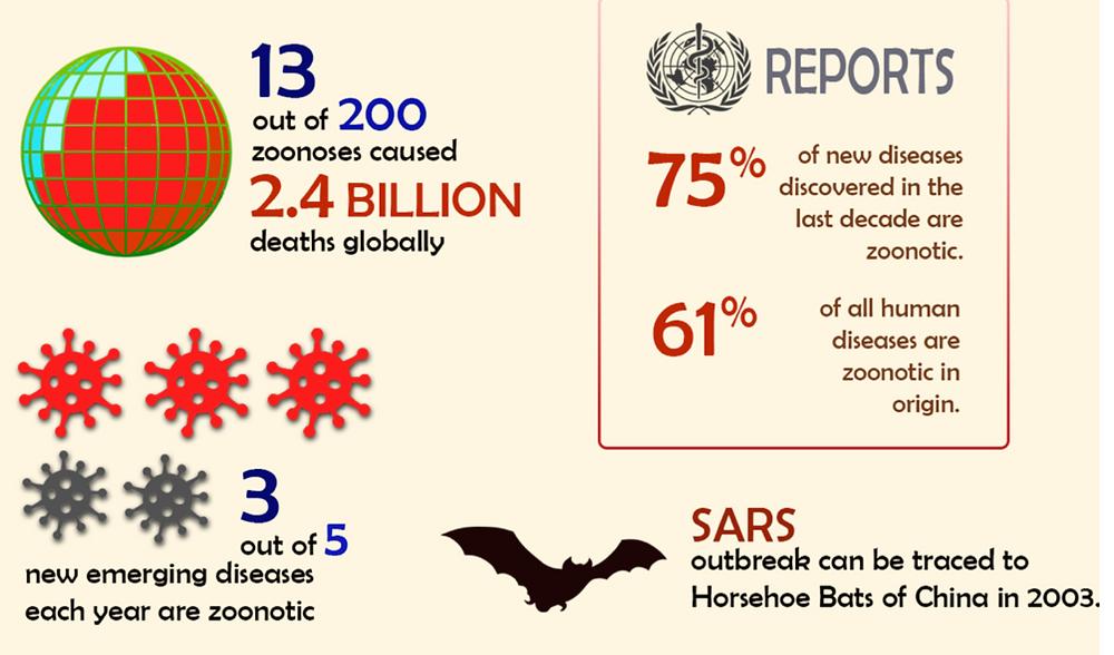 zoonotic diseases viruses deaths covid-19