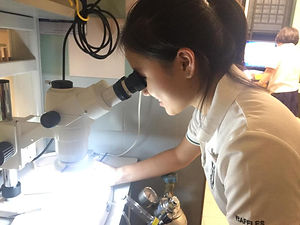 """Kathryn Chia"" Singapore Science Apothekathryn"