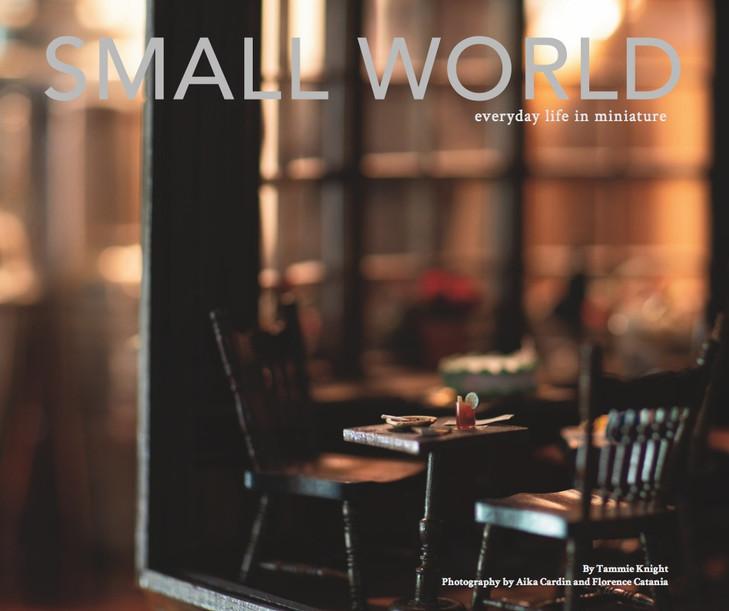 Small World Book Cover.jpg