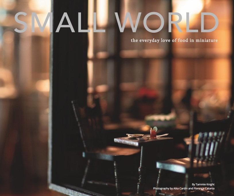 Final SMALL WORLD book cover.jpg