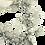 Con-fusione gioielli: orecchini ElisEar