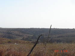 7-25-2010 047