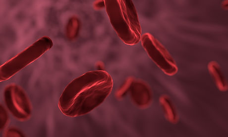 red-blood-cells-3188223_1920.jpg