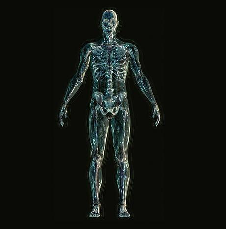 skeleton-1243818_1920.jpg