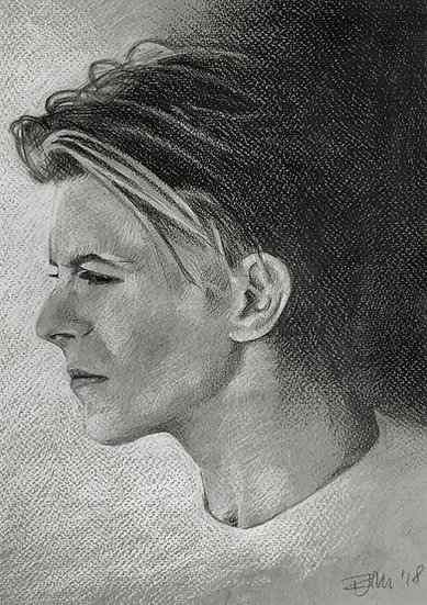 Bowie Drawings – Profile