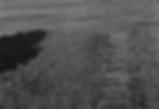 Screenshot 2019-09-10 at 08.38.00.png