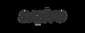 Sanyo-logo-880x660_edited.png