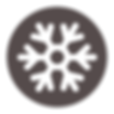 COLD ICON.png