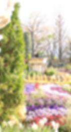 ㉕「ハーブ石鹸作り」ハーブ庭園.JPG