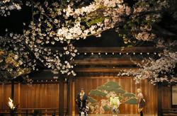 2016夜桜能「苞山伏」
