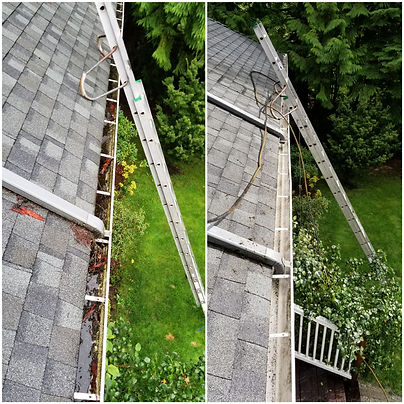 Gutter Cleaning Mission BC.jpg