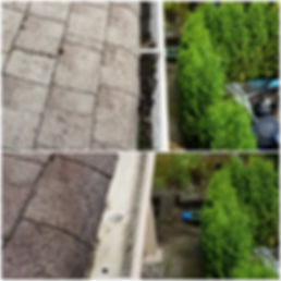 Gutter Cleaning 32865 Arbutus Avenue Mis