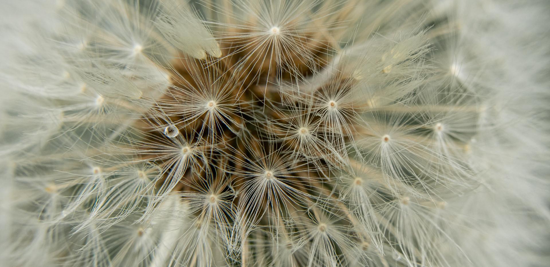 Jessica Stanitz Fotografie-63.jpg