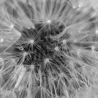 Jessica Stanitz Fotografie-01.jpg