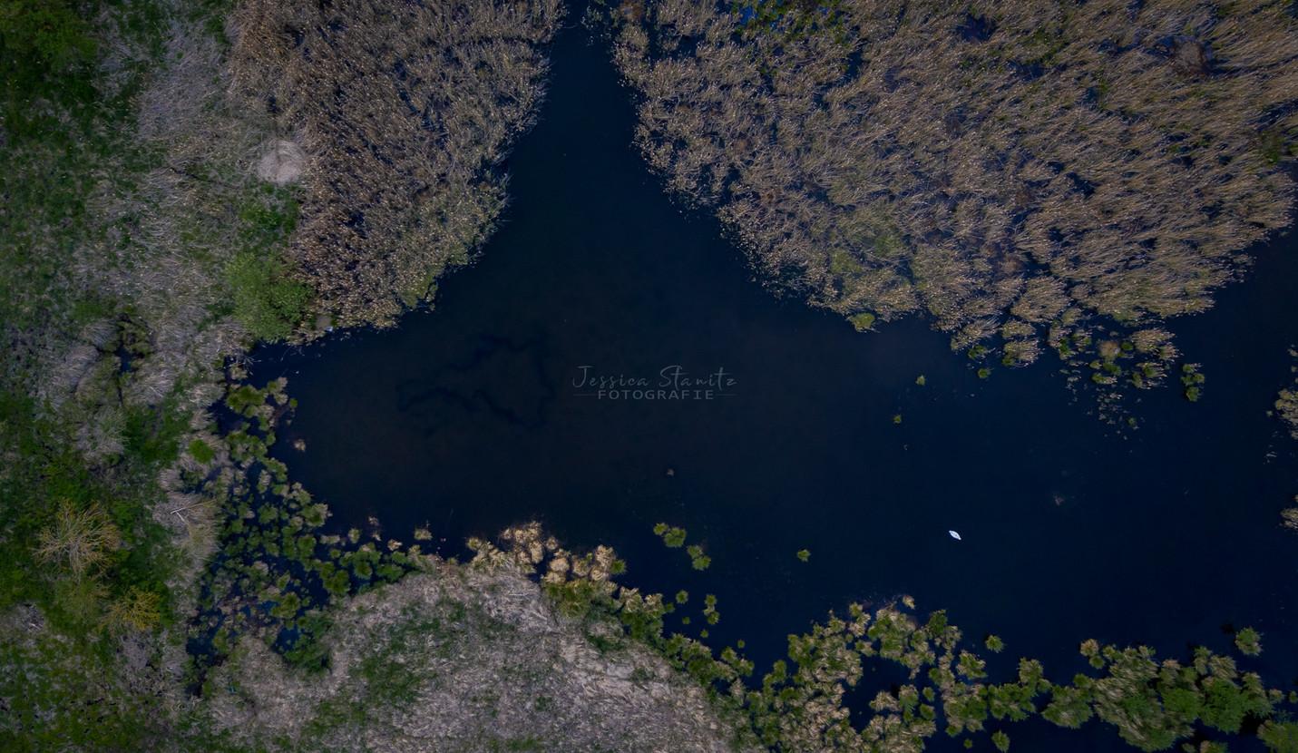 Luftbild Natur