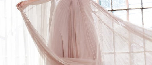 A-line pleated dress with english net overlay