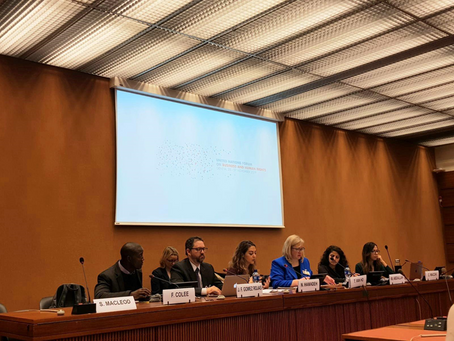 "SLDP participates in Two Panels at ""United Nations Forum on Business and Human Rights"" in Geneva"