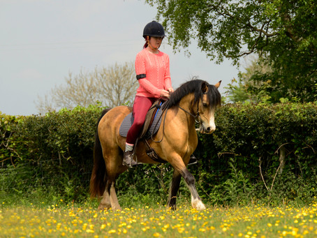 The Walk [Synchronising With Your Horse]