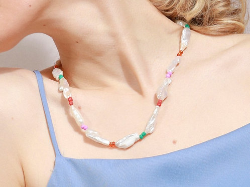 Collar Begonia