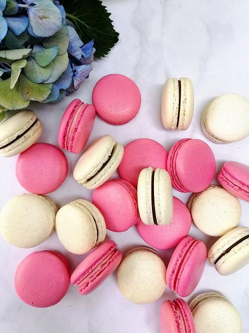 Macaron Gift Box of 7