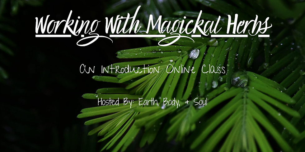 Working With Magickal Herbs- An Introduction Class