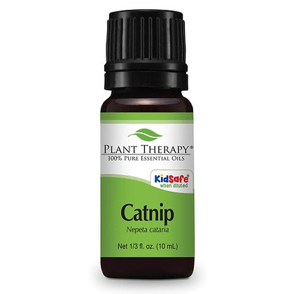 Catnip Essential Oil