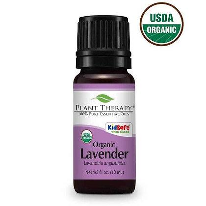 Lavender Essential Oil- Organic