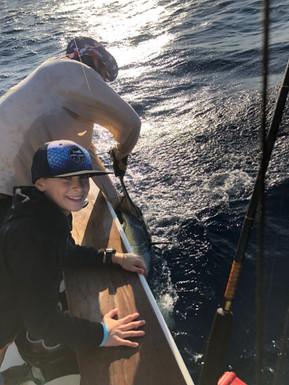 Landon_sailfish_release