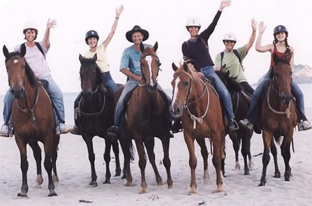 Tokomaru Bay Horse Trek