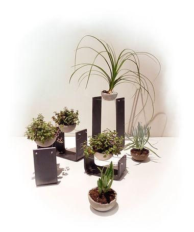 Equilibre_portes_plantes.jpg