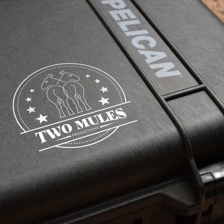 Two Mules Identity Gallery