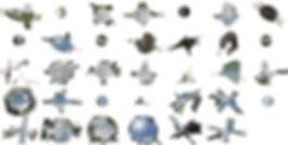 finding the blind spot(screenshot).2.jpg