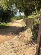 beautiful path pic.jpeg