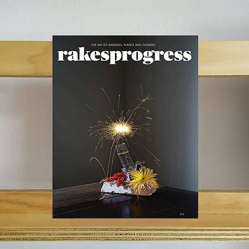 Rakesprogress Magazine - Issue 12 - Reading Room