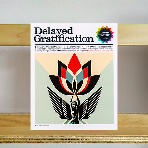 Delayed Gratification Magazine - Issue 40 - Reading Room