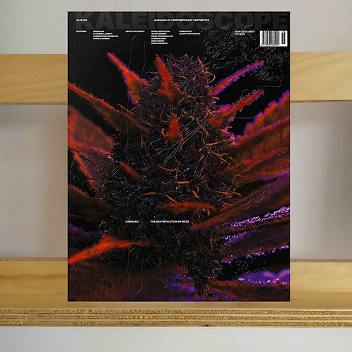 Kaleidoscope Magazine - Issue 36 - Reading Room